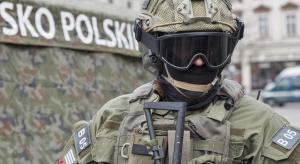 Do 2026 roku modernizacja polskiej armii ma kosztować 185 mld zł