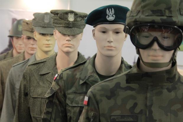 Modernizacja sił zbrojnych - co, za ile i od kogo?