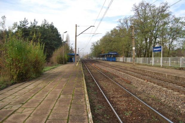 Przetarg na remonty linii kolejowej Kędzierzyn-Koźle - Chałupki