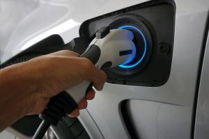 Lasy Państwowe naładują samochody elektryczne