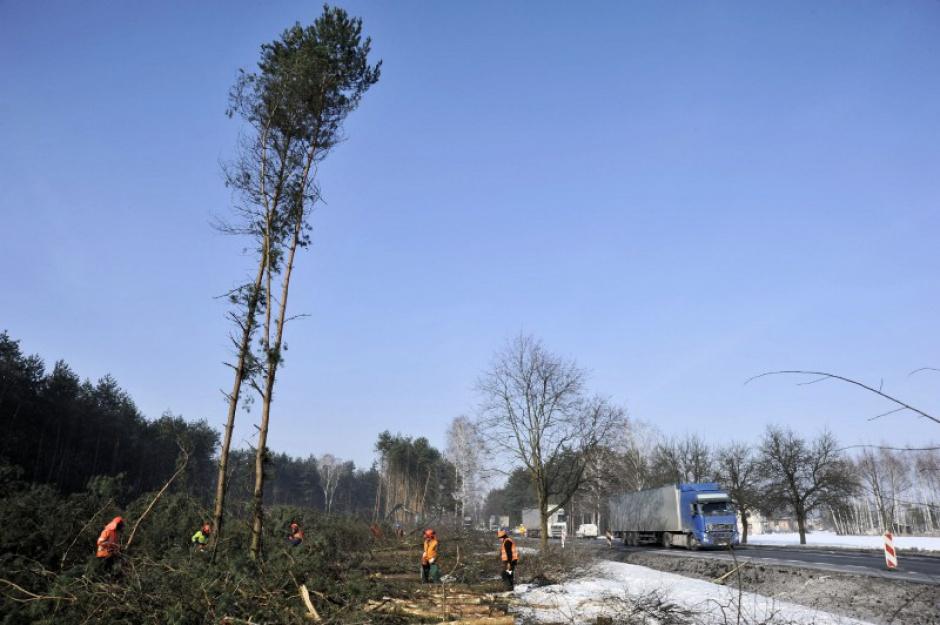 Zdjęcie numer 15 - galeria: Polska w budowie. 1300 km dróg w realizacji i 700 km w przetargach