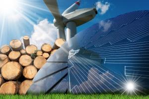PSEW: w 2019 nadpodaż zielonych certyfikatów około 14 TWh