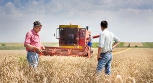 Wiceminister rolnictwa: w lipcu powołanie Grupy Spożywczej