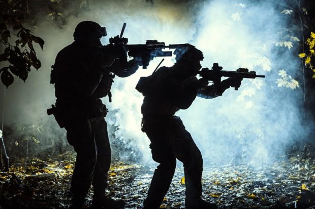 Nowy system kontroli eksportu broni w UE
