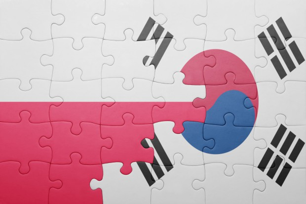 63ea8344f887bb Koreańczycy inwestują w Polsce na potęgę. I to w kluczowej branży ...