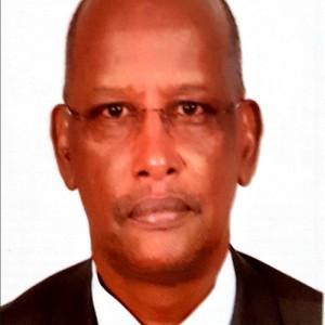 Ibrahim M. Mohamed