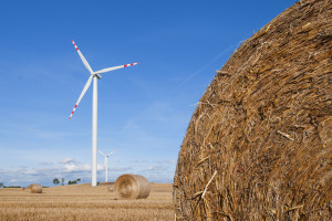 Jest postulat zwiększenia państwowego wsparcia produkcji prądu z nowych wiatraków