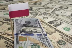 Polska firma ma kłopot w Teksasie. Fiskus żąda 6,4 mln zł
