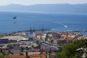 OT Logistics nie odpuszcza ws. akcji chorwackiego portu