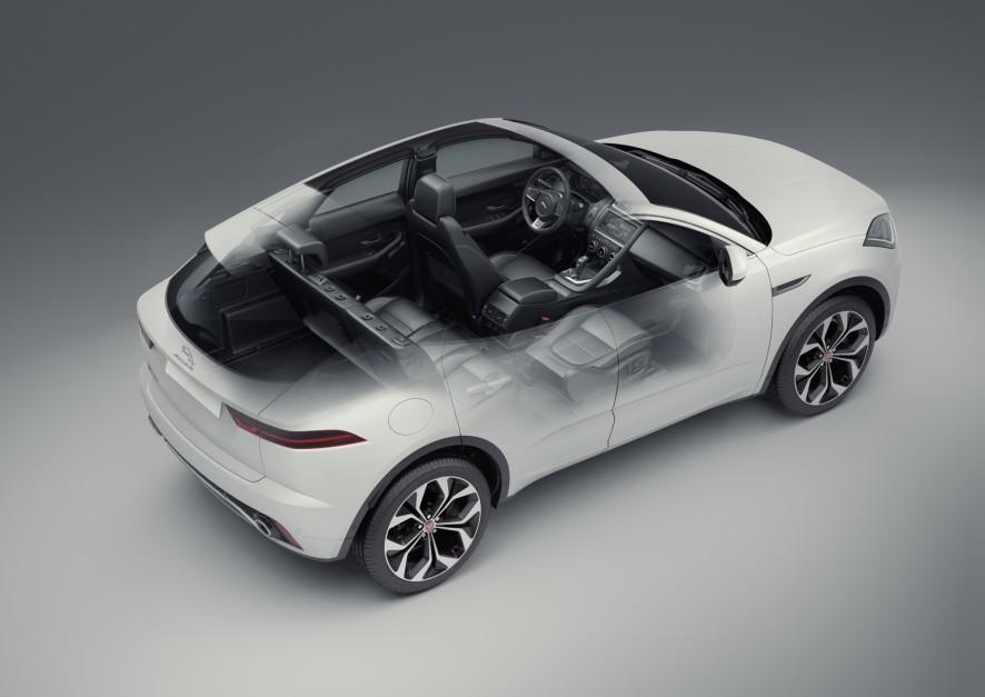 Zdjęcie numer 3 - galeria: Jaguar na pasku