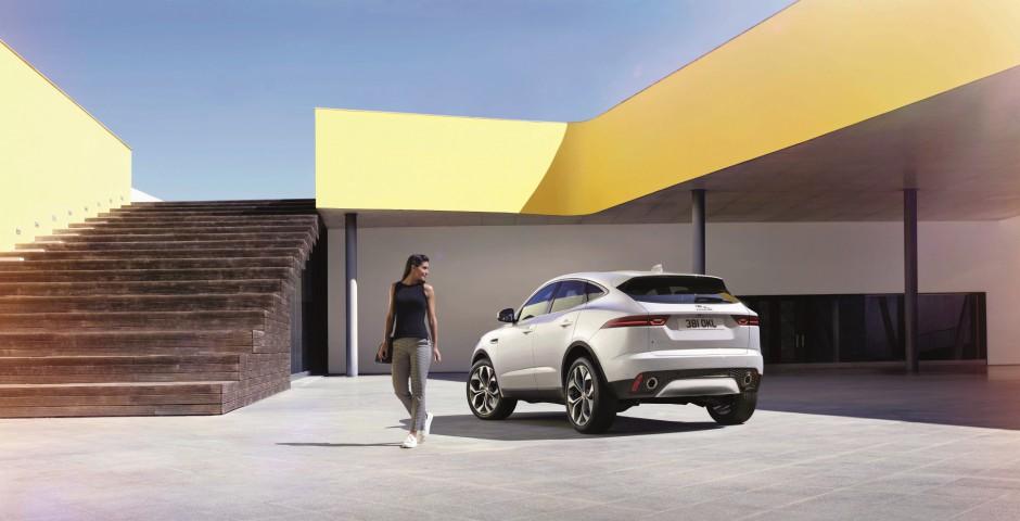 Zdjęcie numer 1 - galeria: Jaguar na pasku