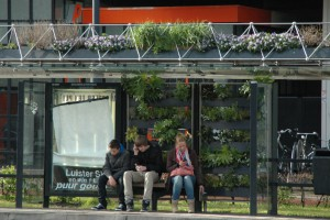 Wrocław zielonymi przystankami będzie walczyć ze smogiem