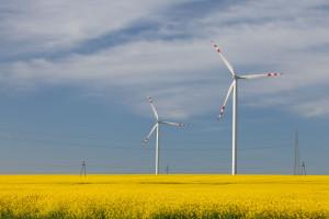 Uprzemysłowiony region stawia na energetykę wiatrową. Już teraz jest potentatem