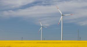 """To idealny partner dla wiatraków. """"Potrzebuje energii z OZE"""""""