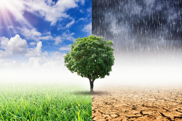 CAKE zbada wpływ polityki klimatyczno-energetycznej na polską gospodarkę