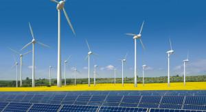 Mają zrewolucjonizować Polską energetykę. Tłum chętnych w resorcie energii