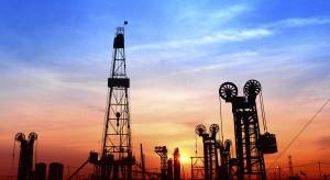 Rosnieft wycofał się ze współpracy z Iranem
