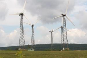 Nici z wiatraków Polenergii w Grabowie