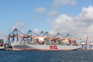 Zbadali 12 najważniejszych portów na świecie. Wnioski zupełnie zaskakują