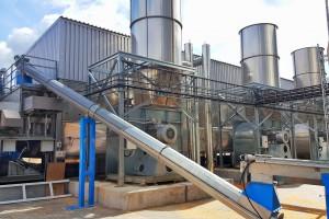 Największy producent mebli będzie eksportował biopaliwo