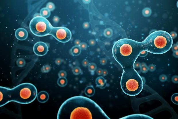 KNF zatwierdziła prospekt emisyjny NanoGroup