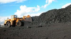 Legitymowanie przy zakupie węgla to przesada