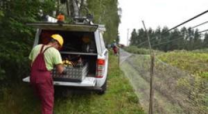 W całej Polsce jeszcze 134 tys. odbiorców bez prądu