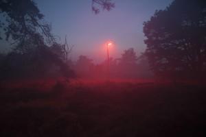 W Kaliszu i Ostrowie Wlkp zapłacą o 70 proc. mniej za oświetlenie uliczne
