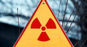 Dymisja wiceszefa Międzynarodowej Agencji Energii Atomowej