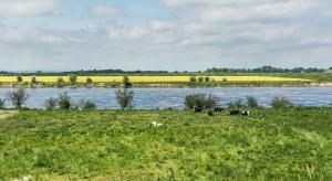 Martwy Bałtyk, susza w kraju, to coraz bardziej realny scenariusz. Trzeba działać