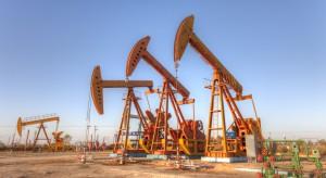 Po sporych wzrostach ceny ropy ustablizowały się