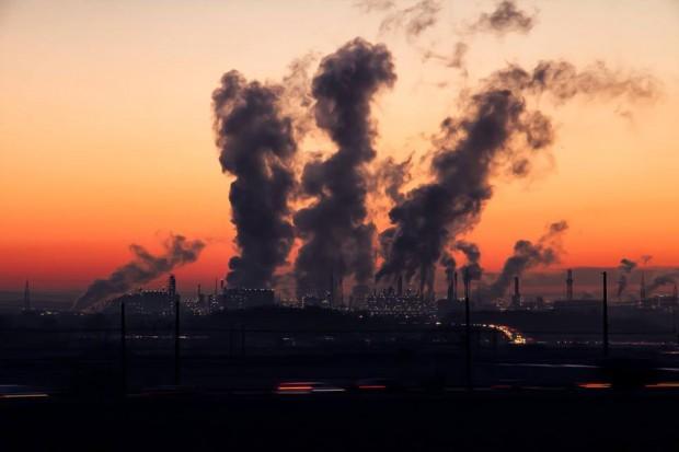 Biowęgiel to dobry sposób na ograniczenie emisji CO2