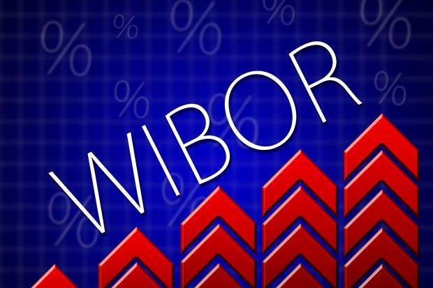 W przyszłym roku nowa dokumentacja stawek referencyjnych WIBID i WIBOR