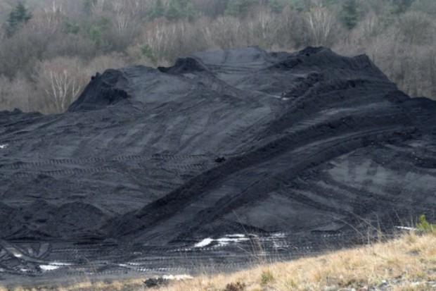 Kopalnie powinny odzyskać węgiel i muły z hałd