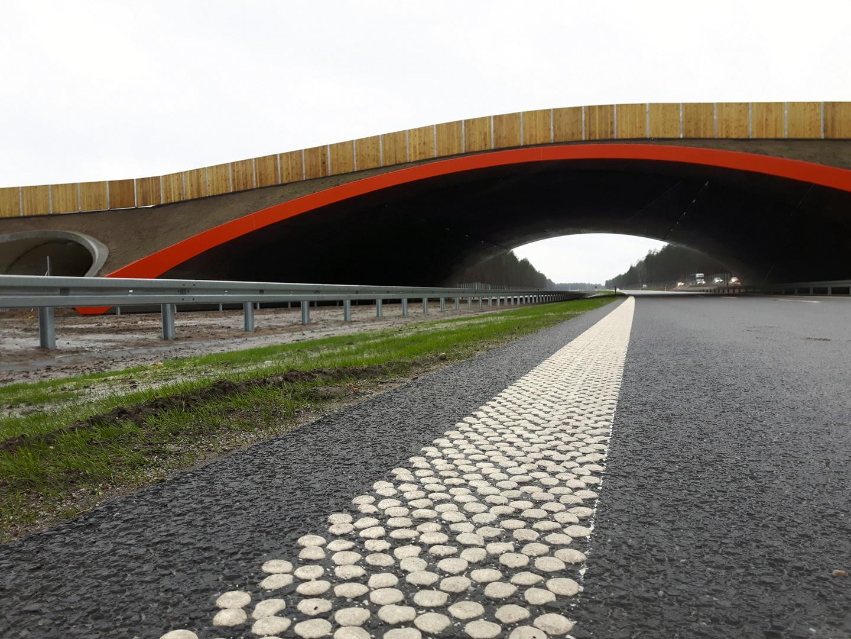 Droga S7 Rychnowo – Olsztynek. fot. MIB