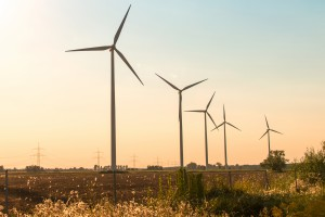 Negocjują budowę farmy wiatrowej koło Konina
