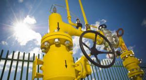 Ceny gazu mogą spaść o 20 proc. Wystarczy jedna odważna decyzja