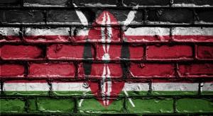 Kenia - kto powinien tam inwestować? PAIH mówi głównie o jednej branży