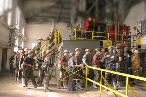 W poszukiwaniu górnika