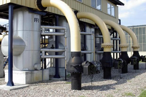 Gaz-System: jest umowa na wycinkę drzew w pasie budowy gazociągu do EC Żerań
