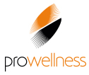 Pro-Wellness Park - Fotele Masujące, Sauny, Grille i Ogrodowe Wanny Spa marki Hot Spring