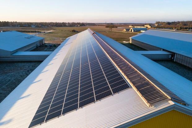 Enefit Green zbudowała elektrownię PV na farmie mleczarskiej