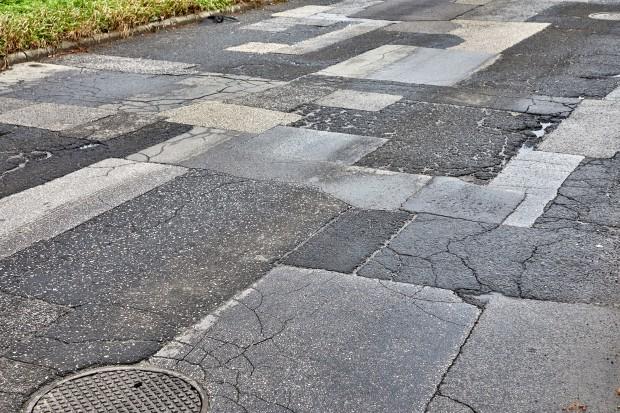 PiS szuka pieniędzy na drogi w Lasach Państwowych. Leśnicy oburzeni