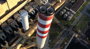 Enea wierzy w przyszłość biomasy w Polsce