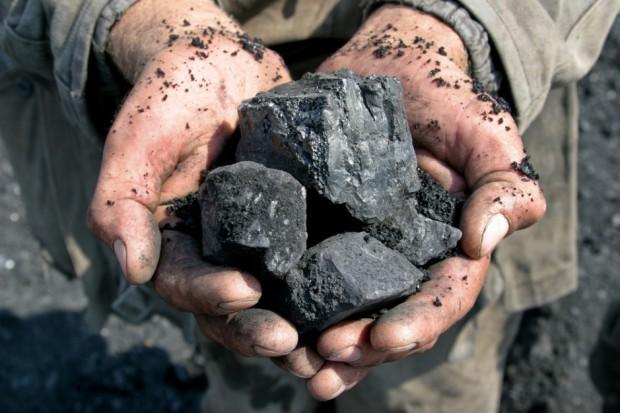 Tomasz Rogala, prezes PGG, o skutkach sprowadzania do Europy setek milionów ton węgla