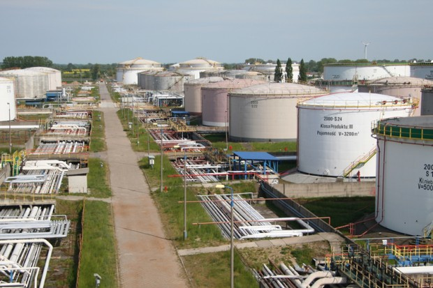 Lotos Biopaliwa kupuje olej rzepakowy