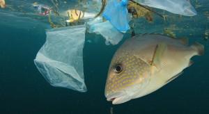 Japonia ma pomysł, jak poradzić sobie z plastikiem w oceanach