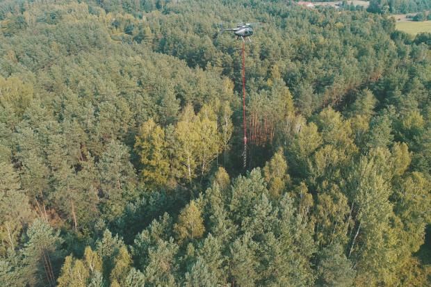 PGE Dystrybucja testuje helikoptery przy wycince gałęzi