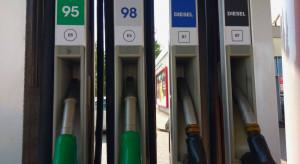 Przedstawiamy ranking najszybciej rosnących sieci stacji paliw w 2018 roku