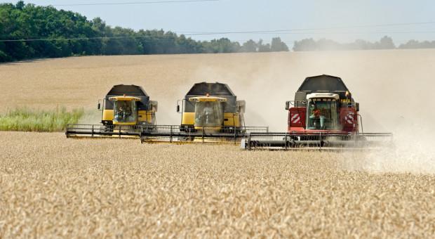 Od kołchozów do holdingów. Produkcja rolna na Ukrainie rośnie w siłę